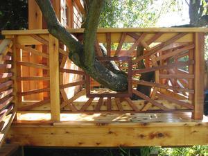 Plum Tree House 010 (Large)