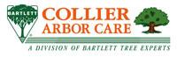 Collier Arbor Care